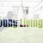 Why Young Living?